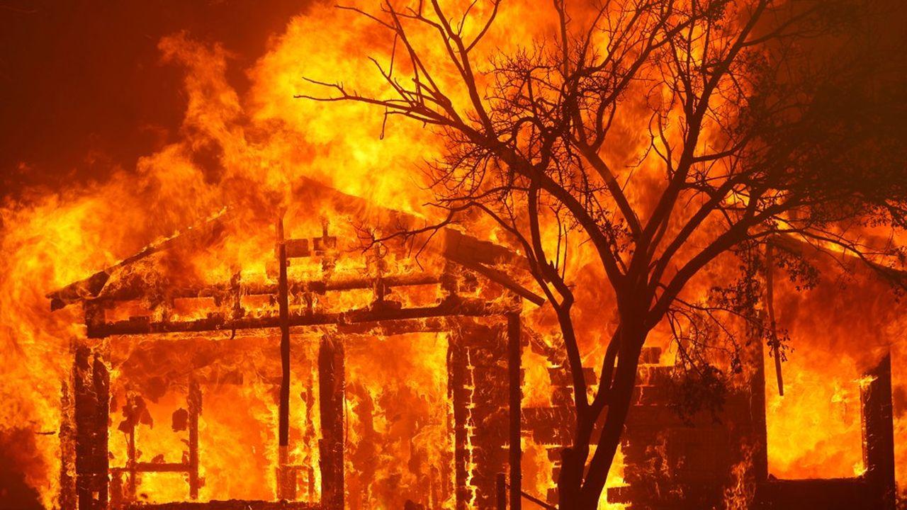 Selon le Los Angeles Times, plus de 485.600 hectares ont été dévorés par les flammes depuis un mois, soit beaucoup plus que les 104.813 hectares brûlés sur l'ensemble de l'année dernière.