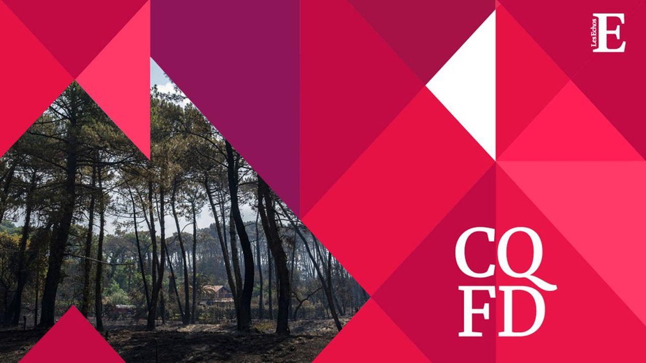 Plus secs, les arbres sont également plus vulnérables face aux incendies, qui eux-mêmes font grimper le taux de CO2 dans l'atmosphère.