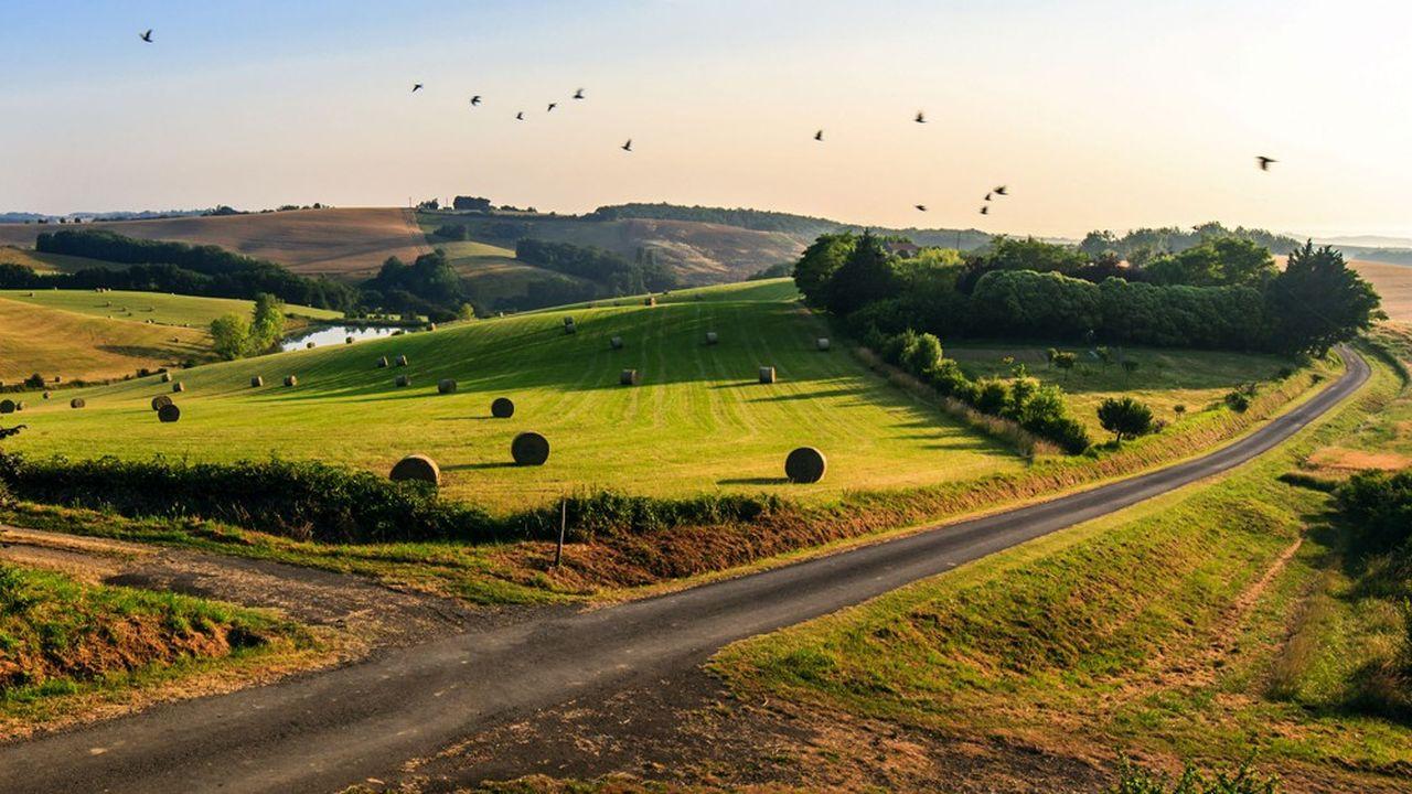 Le Gers a bénéficié d'un afflux plus important de vacanciers de la région et d'Ile-de-France qui se sont mis au vert dans la petite Toscane française.