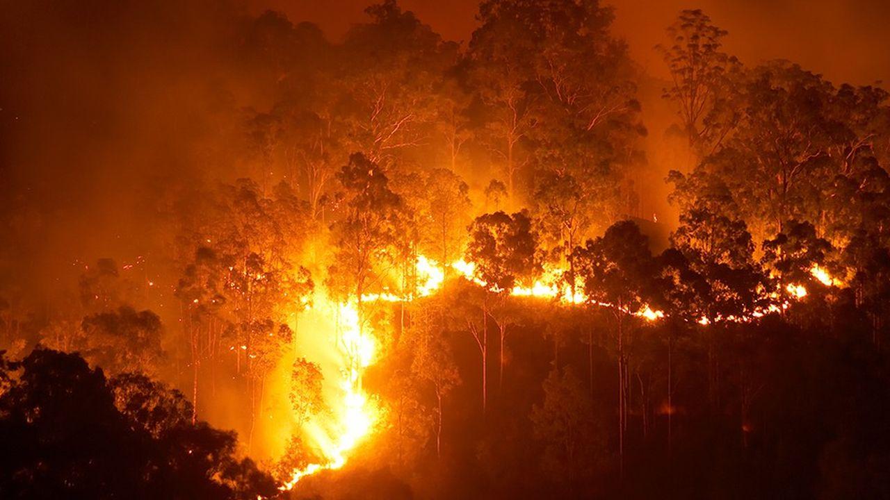 Pour lutter contre les incendies de forêts, des chercheurs tentent de transformer des avions de ligne en bombardier d'eau lorsqu'ils ne sont pas en service.