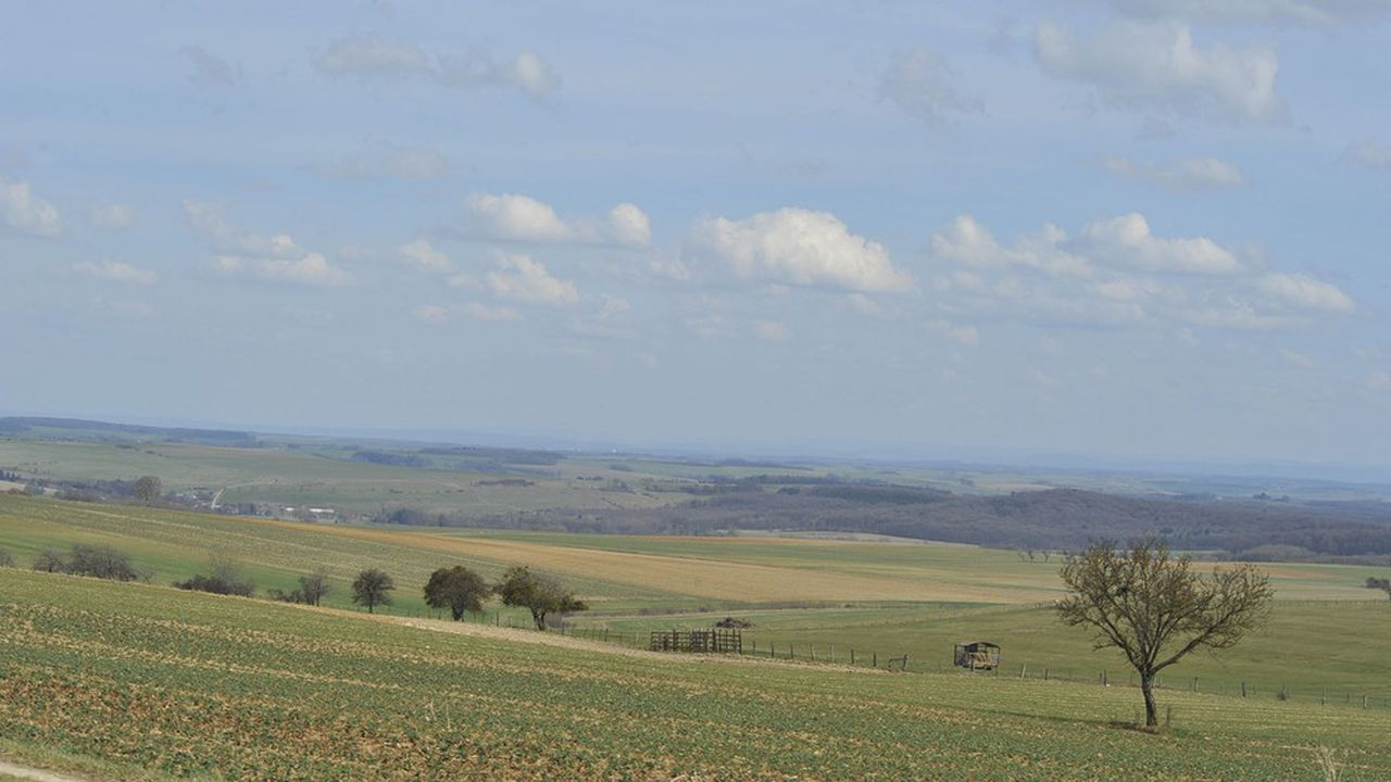 Trois millions de mètres cubes sont prélevés chaque année par les collectivités locales et les agriculteurs, la fromagerie l'Ermitage et Nestlé Waters (25%).