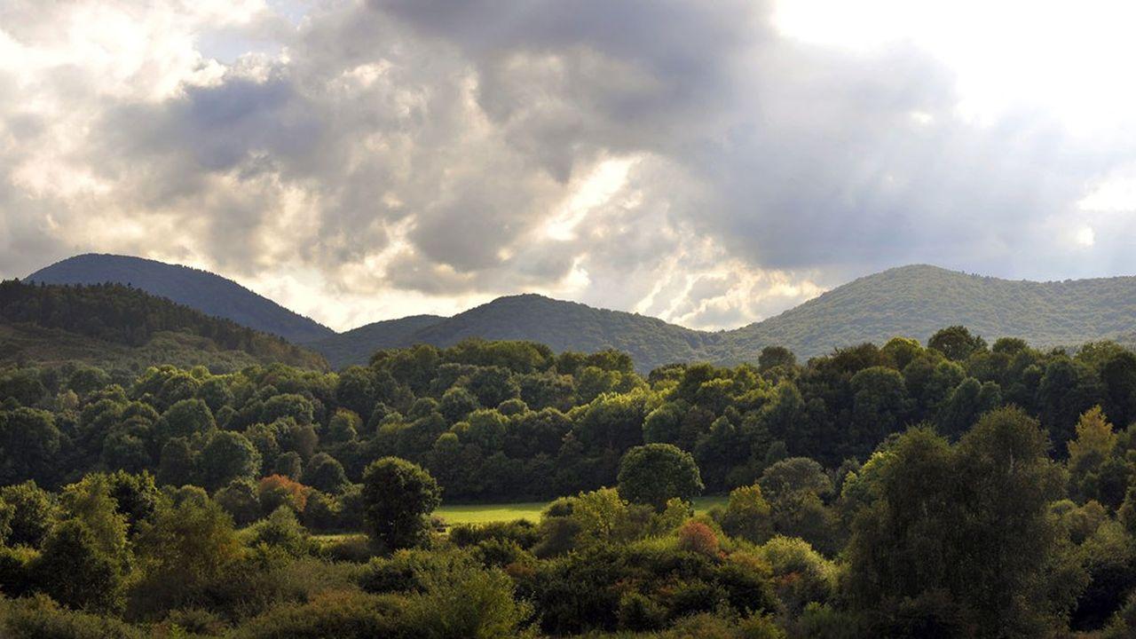 L'Auvergne connaît depuis quelques années des épisodes de sécheresse qui inquiètent les Auvergnats habitués à voir la région toujours humide.