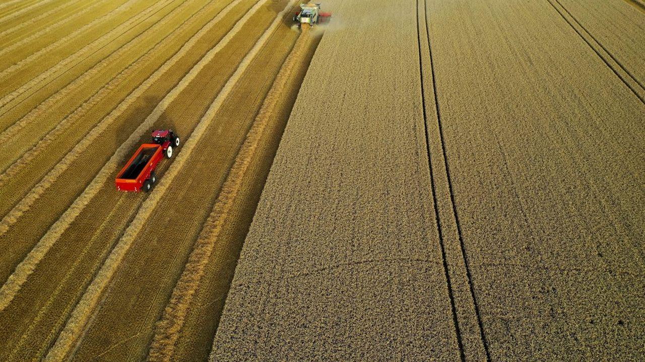 Le gouvernement veut «accélérer la transition agro-écologique au service d'une alimentation saine, durable et locale».