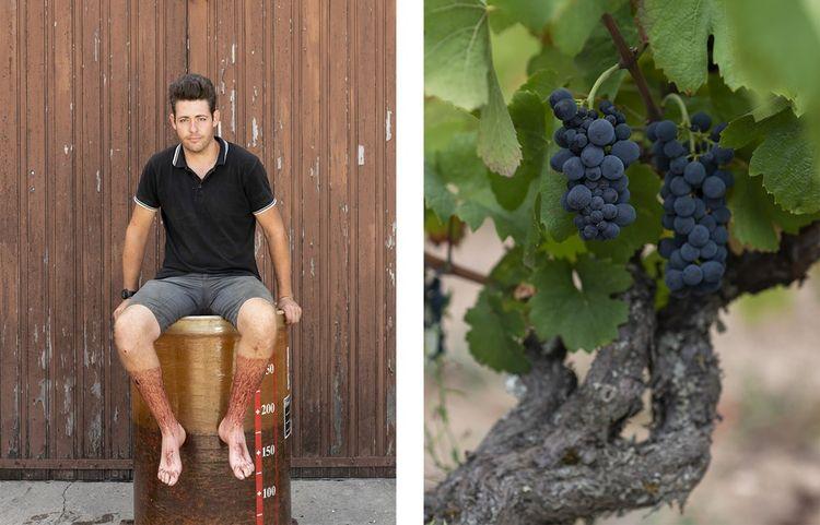 Yann Bertrand, 29 ans, a repris l'exploitation familiale à Fleurie, dans le Beaujolais.