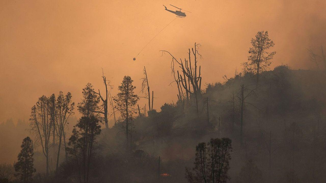 Des dizaines de personnes évacuées par hélicoptère