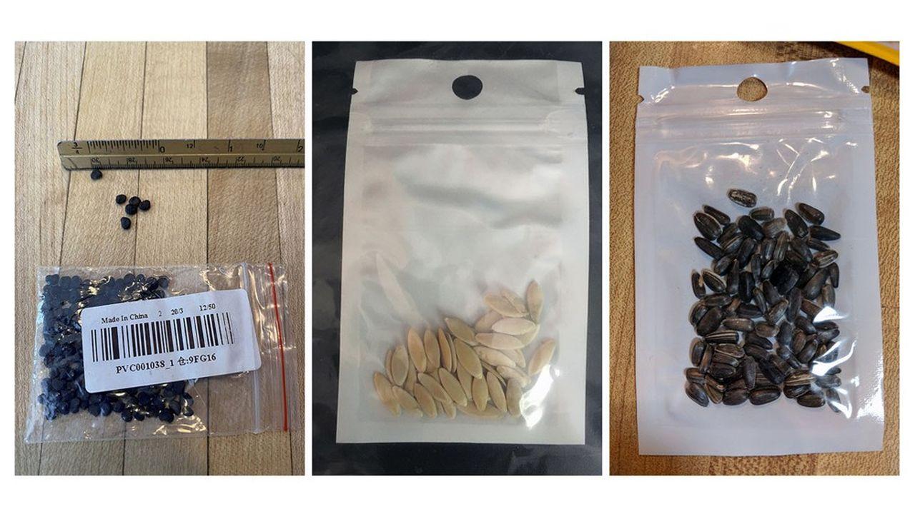 Des dizaines de particuliers ont reçu des mystérieuses graines qu'ils n'avaient pas commandées.