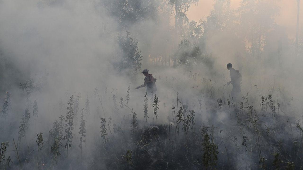 Des spécialistes de l'Agence fédérale russe des forêts face à un incendie dans la région d'Omsk, le 11août 2020. REUTERS/Alexey Malgavko
