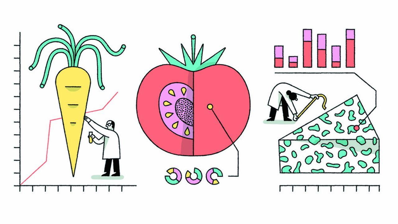 Comment les aliments nous soignent