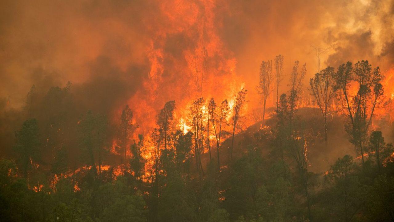 Les assureurs ont dû encaisser ces dernières années des catastrophes naturelles aux coûts très élevés.