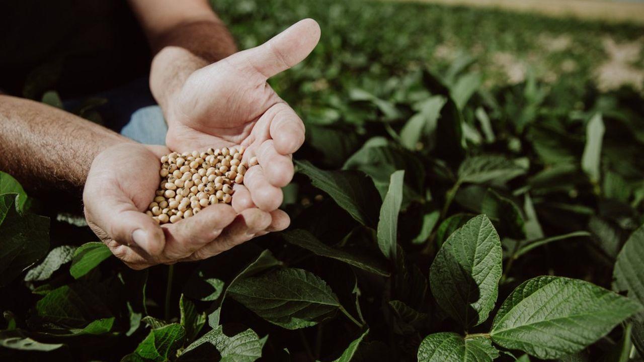 La démarche des producteurs français de soja rejoint l'aspiration des consommateurs à plus de transparence.