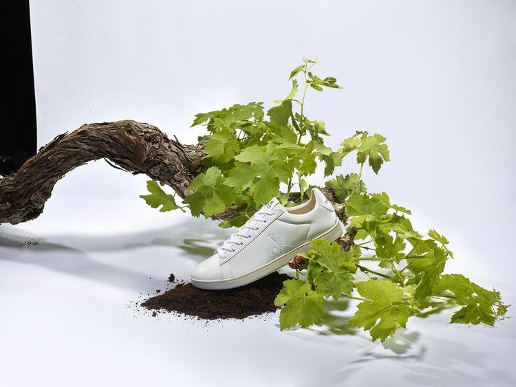 Le Coq propose deux modèles de sneakers, baptisées «Nérée» et «Gaïa», avec du cuir végétal à base de résidus de raisins utilisés pour produire du vin et de la grappa.