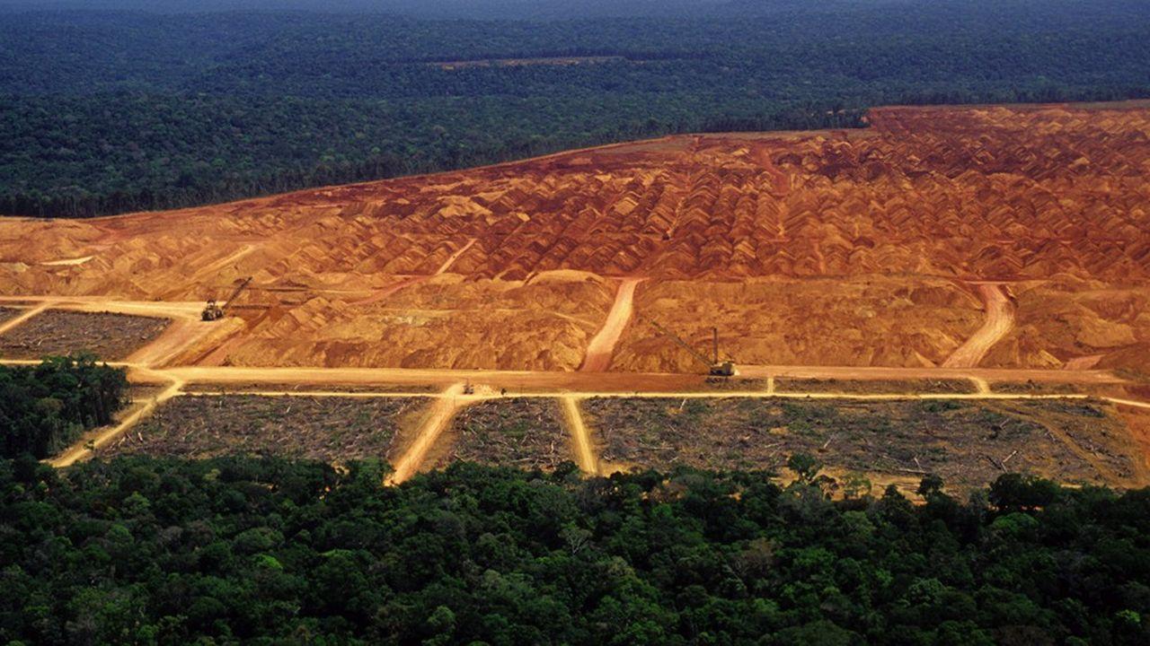 Le développement industriel en Amérique latine se réalise au détriment de la forêt amazonienne.