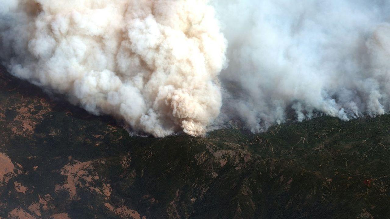 Les feux sont alimentés par des vents forts et une vague de chaleur record liée au réchauffement climatique.