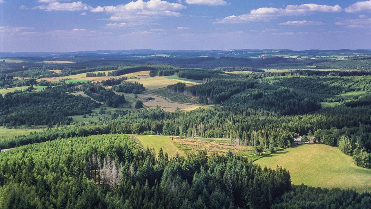 Une rencontre avec la communauté autonome du plateau de Millevaches, dans le Limousin, permet de se reconnecter à la réalité.