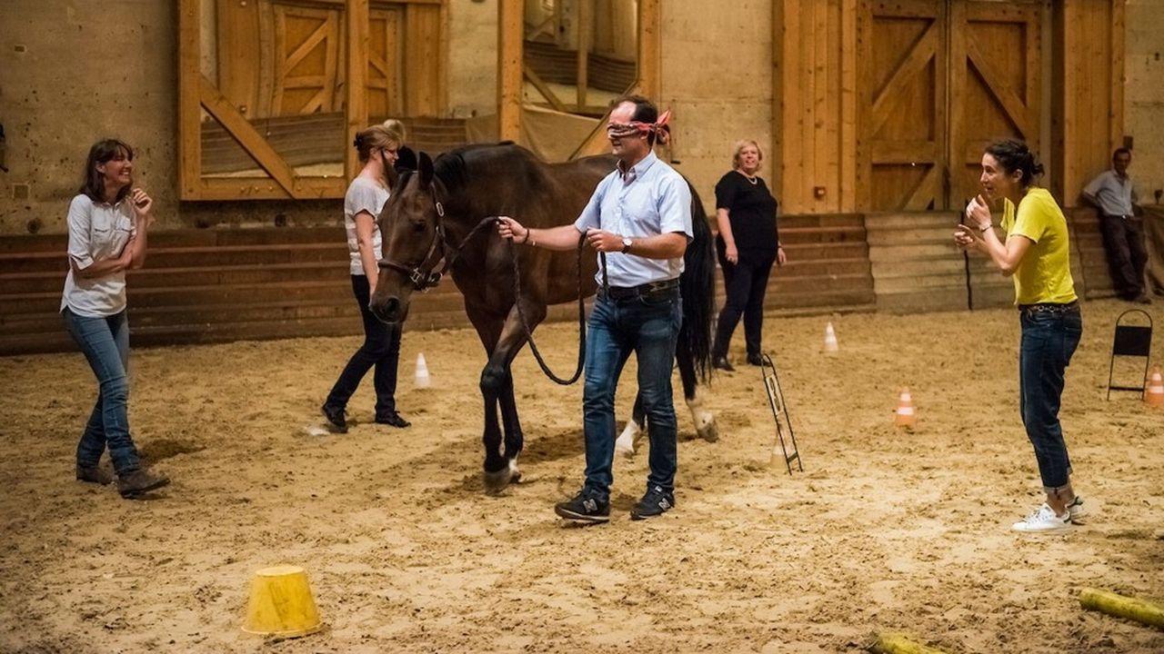 L'exercice proposé à tous les participants : descendre dans le manège afin de faire progresser le cheval au pas, au trot, et dans plusieurs directions.