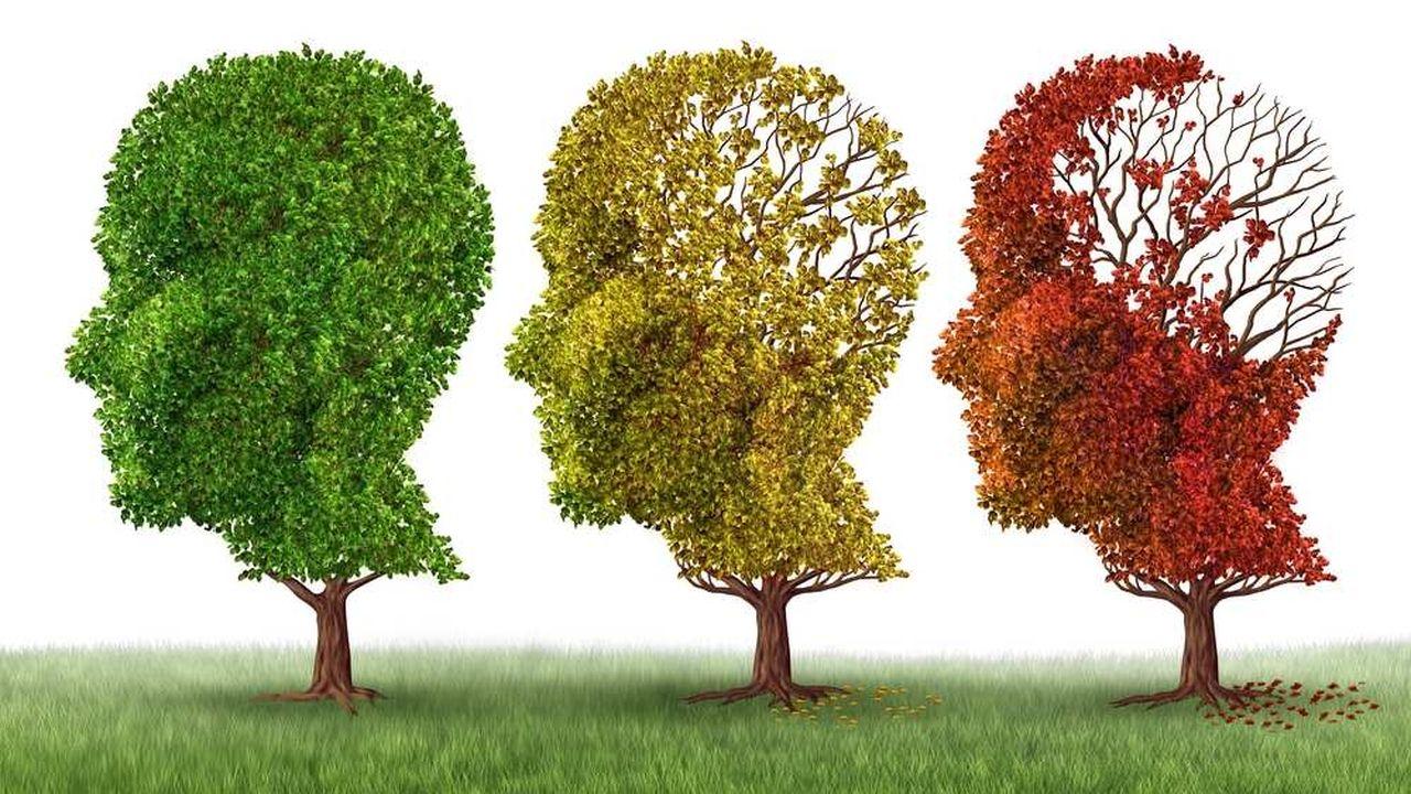 L'aide apportée à une personne atteinte de la maladie d'Alzheimer est chronophage : 6 heures par jour, contre environ 3 heures pour un proche malade, handicapé ou âgé. Les salariés «aidants » sont donc contraints de s'absenter régulièrement du bureau.