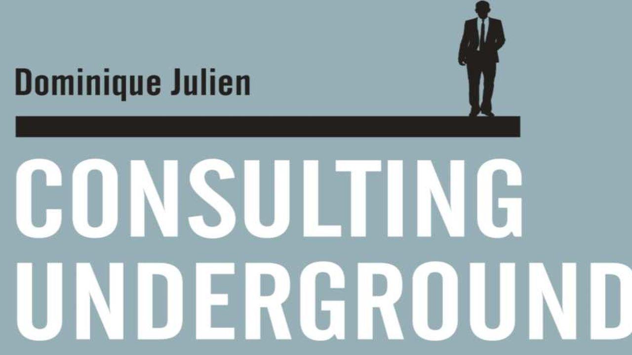 Consulting Underground raconte l'ascension d'Anton dans le monde des SSII, dépeint comme impitoyable