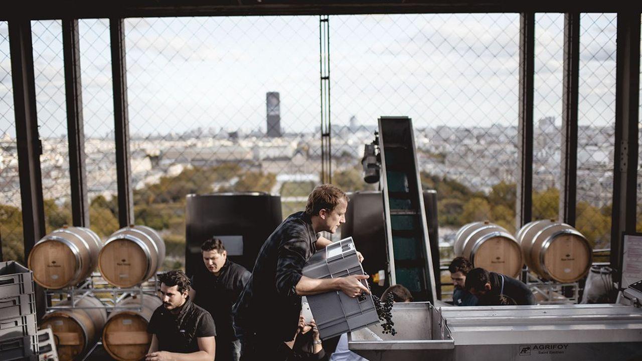 Il y a un an, une partie de la récolte a été mise dans les chais installés au premier étage de la tour Eiffel.