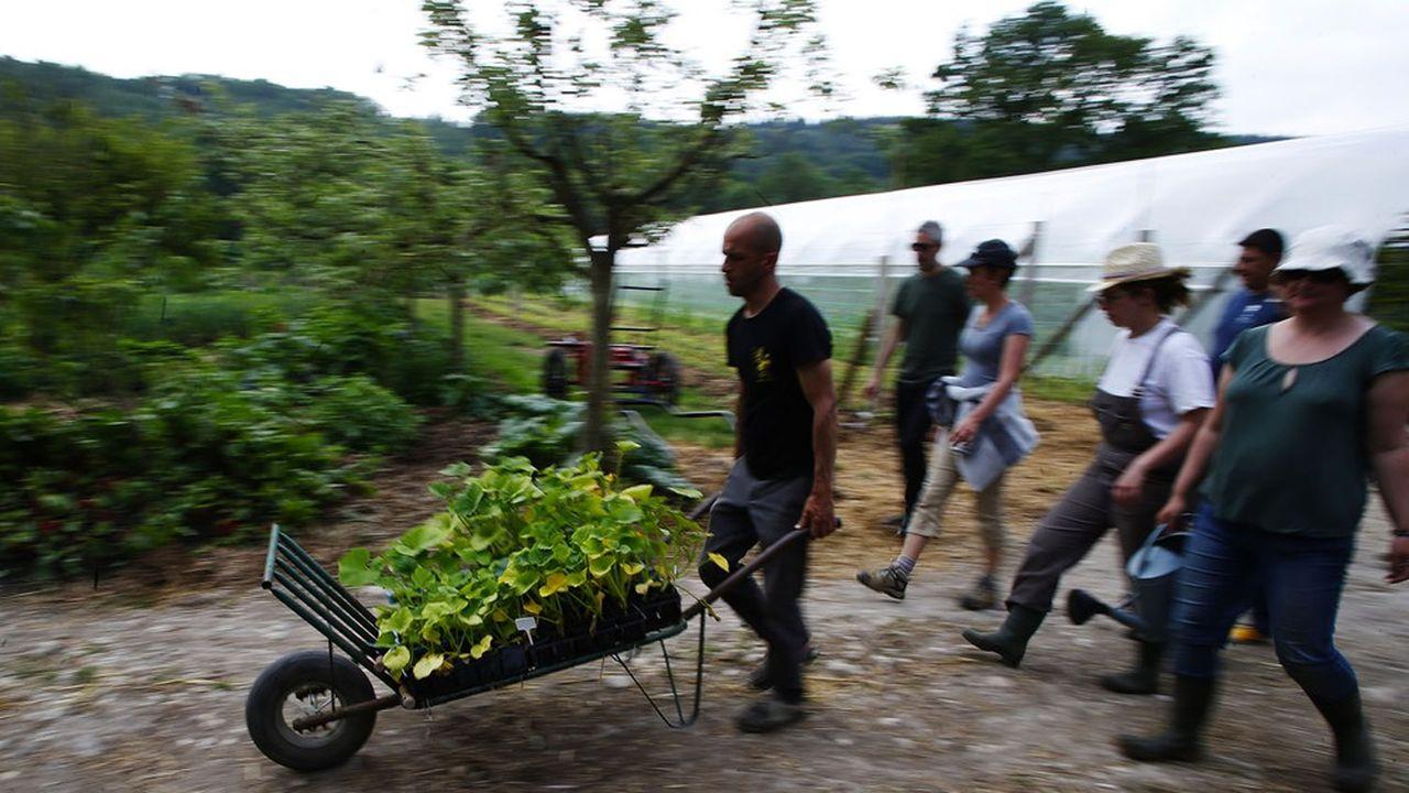 En 2018, l'emploi dans le secteur de l'agriculture biologique est estimé à 100.300équivalents temps plein (ETP), soit 18% de l'emploi dans les éco-activités, signale une étude du ministère de la Transition écologique.
