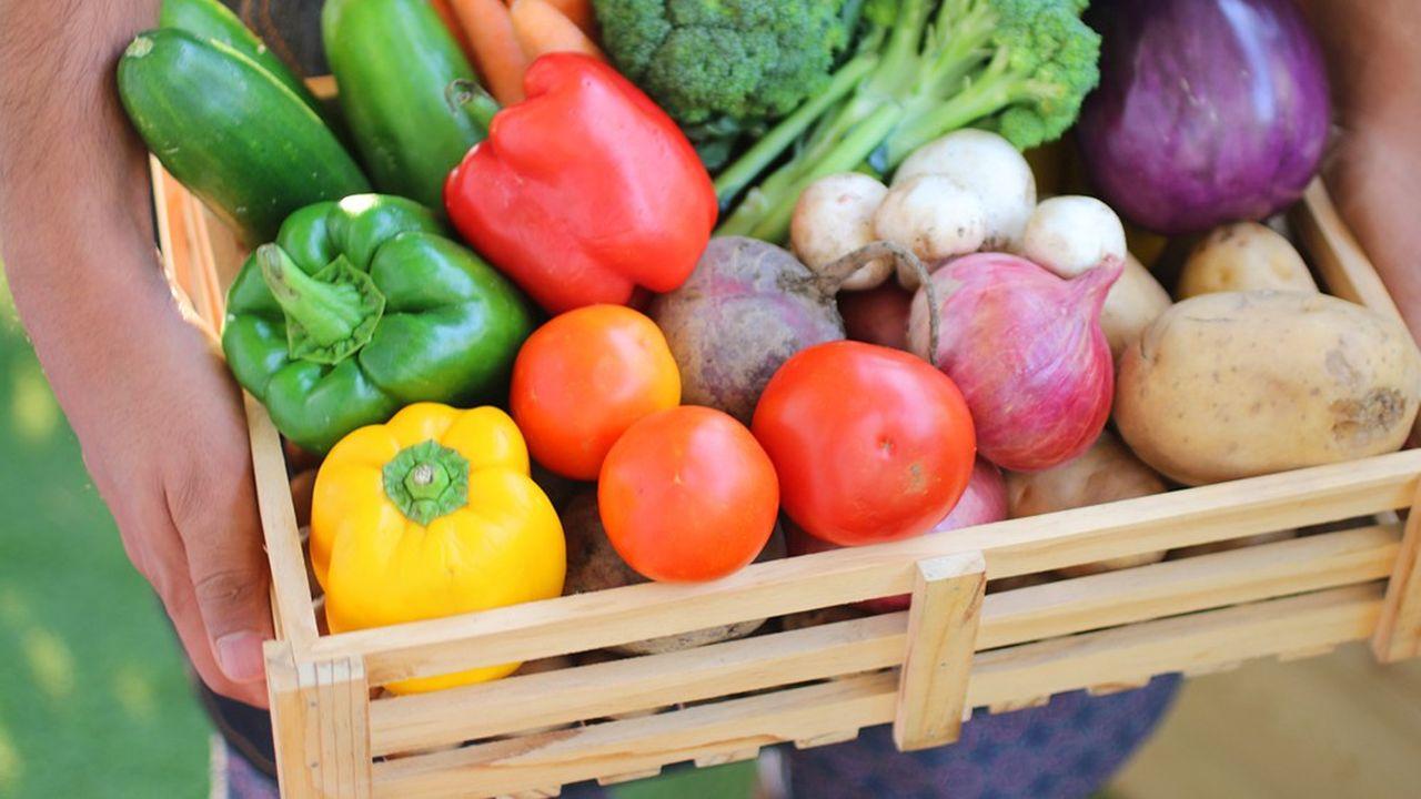 Un peu plus de 10% des échantillons des produits alimentaires non bio analysés en 2017 parla Direction générale de la répression des fraudes (DGCCRF) contenaient un ou plusieurs néonicotinoïdes, selon un rapport de l'ONG Générations futures.