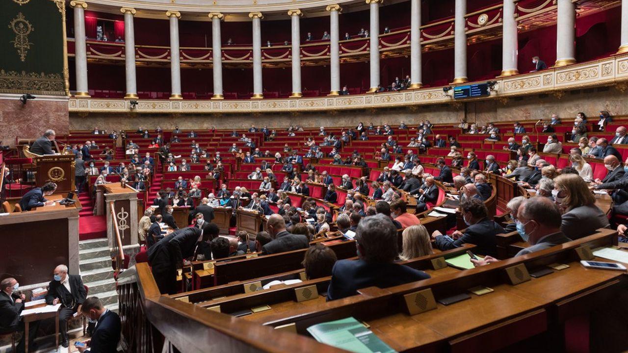 Les débats sur le projet de loi qui permet de réintroduire temporairement les néonicotinoïdes pourraient être agités ce lundi à l'Assemblée nationale
