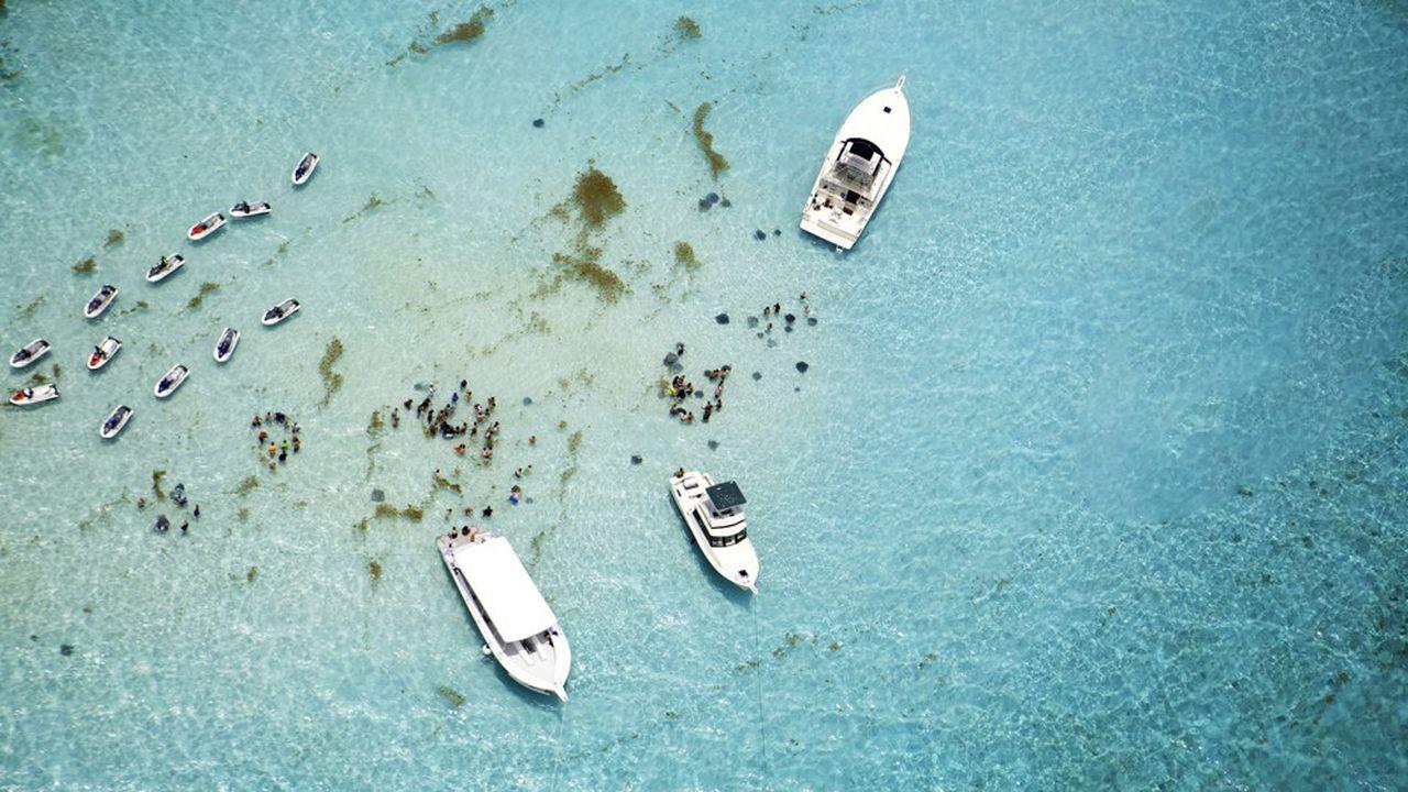 Des bateaux et des nageurs dans une zone où l'on peut nager avec les raies à Stingray City sur l'île de Grand Caïman