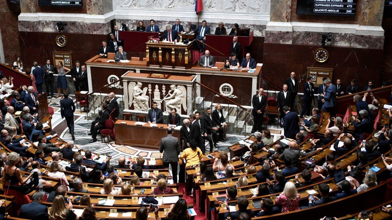 Le groupe Ecologie Démocratie Solidarité soumet au vote en séance à l'Assemblée ce jeudi plusieurs propositions de loi, dont une sur l'allongement du délai légal d'accès l'IVG.