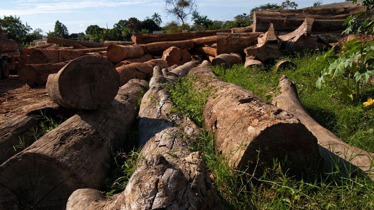 En plus de sa mauvaise gestion du Covid, le Brésil est largement attaqué sur l'accélération de la déforestation.