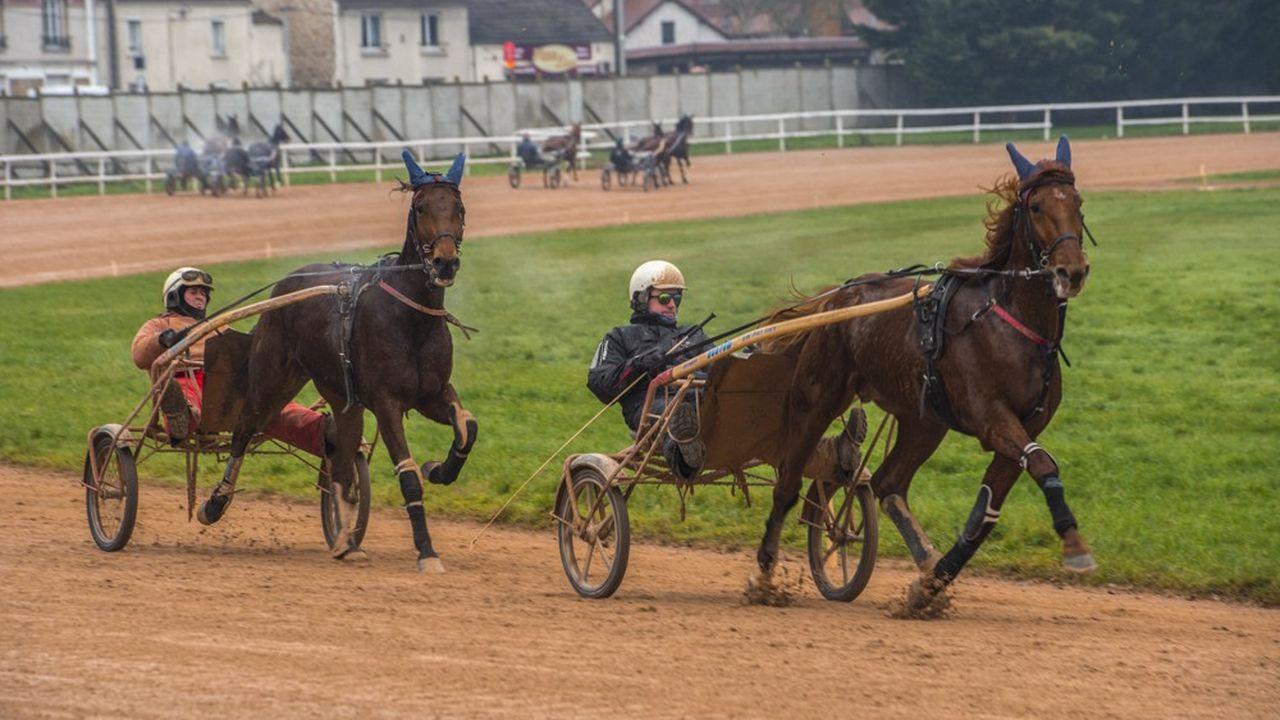 Le Domaine de Grosbois, à Boissy-Saint-Léger, peut servir de centre d'entraînement pour le pentathlon moderne, le dressage olympique, le saut d'obstacles et le concours complet.