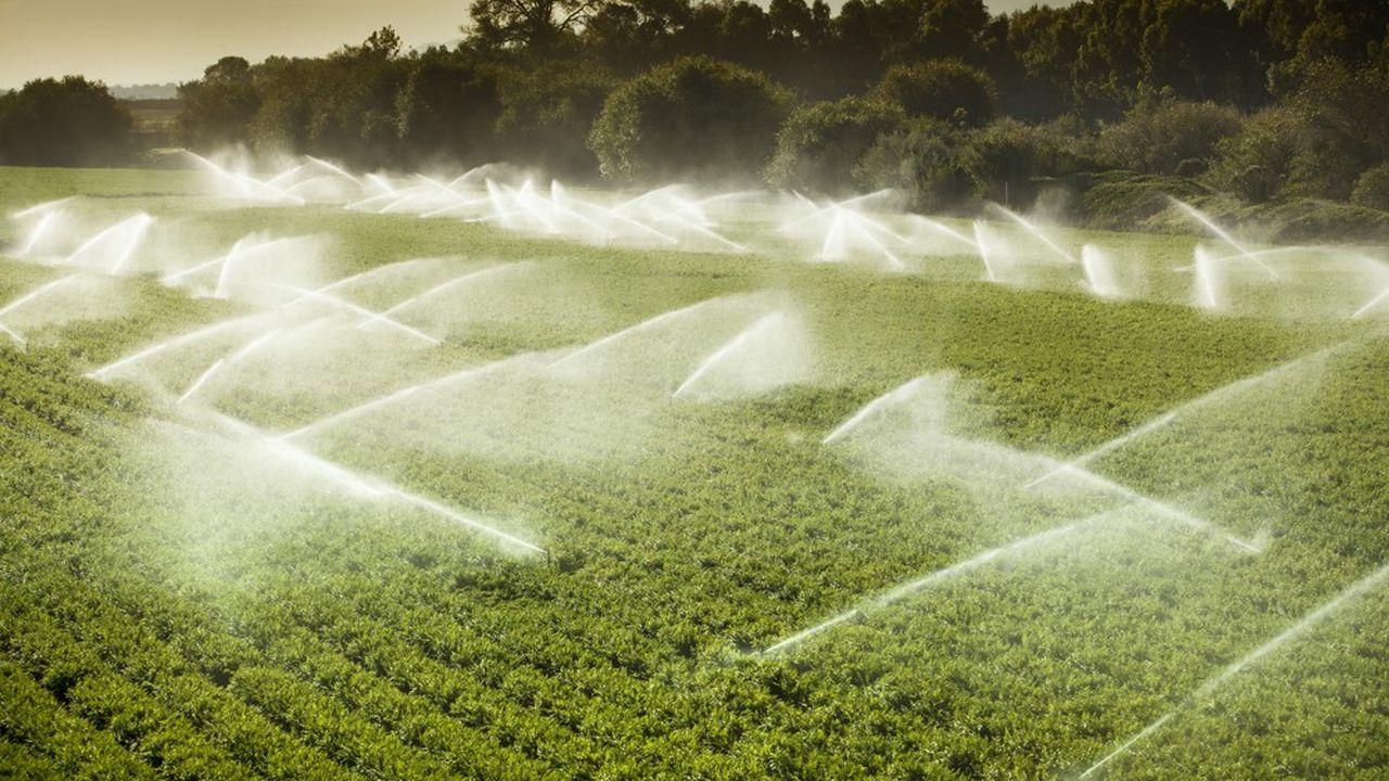 L'irrigation des cultures en Californie représente 40% de la consommation d'eau de l'Etat.
