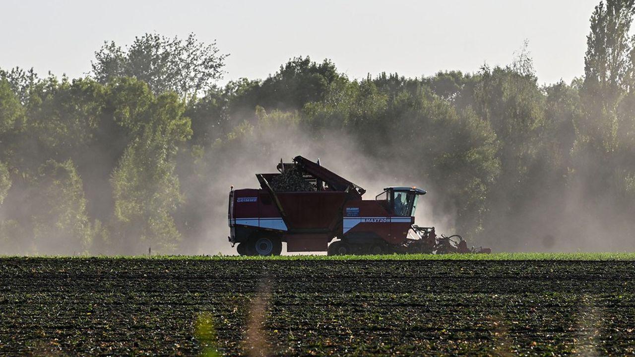 Les ministres européens de l'Agriculture se sont mis d'accord la nuit dernière, après de longs pourparlers, sur une réforme de la politique agricole commune.