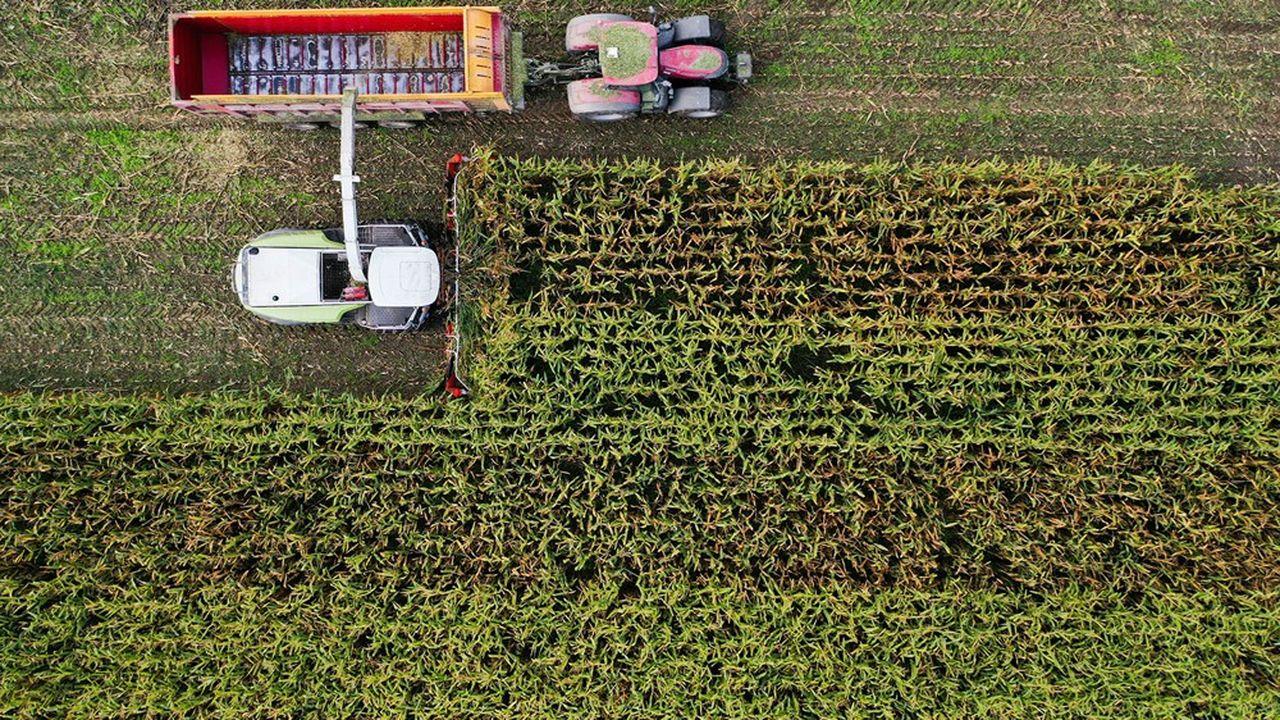 Les ministres de l'Agriculture de l'Union européenne se sont mis d'accord mercredi matin sur une réforme de la politique agricole commune (PAC) marquée par des règles environnementales contraignantes