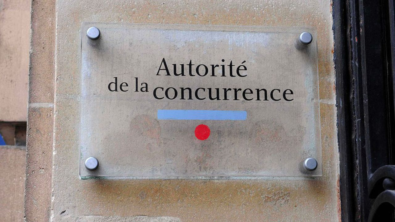 L'Autorité de la concurrence craignait que les accords conclus entre Casino, Auchan, Metro et Schiever pour leurs marques distributeurs ne diminuent la concurrence entre eux, en amenant à «homogénéiser» ces produits.