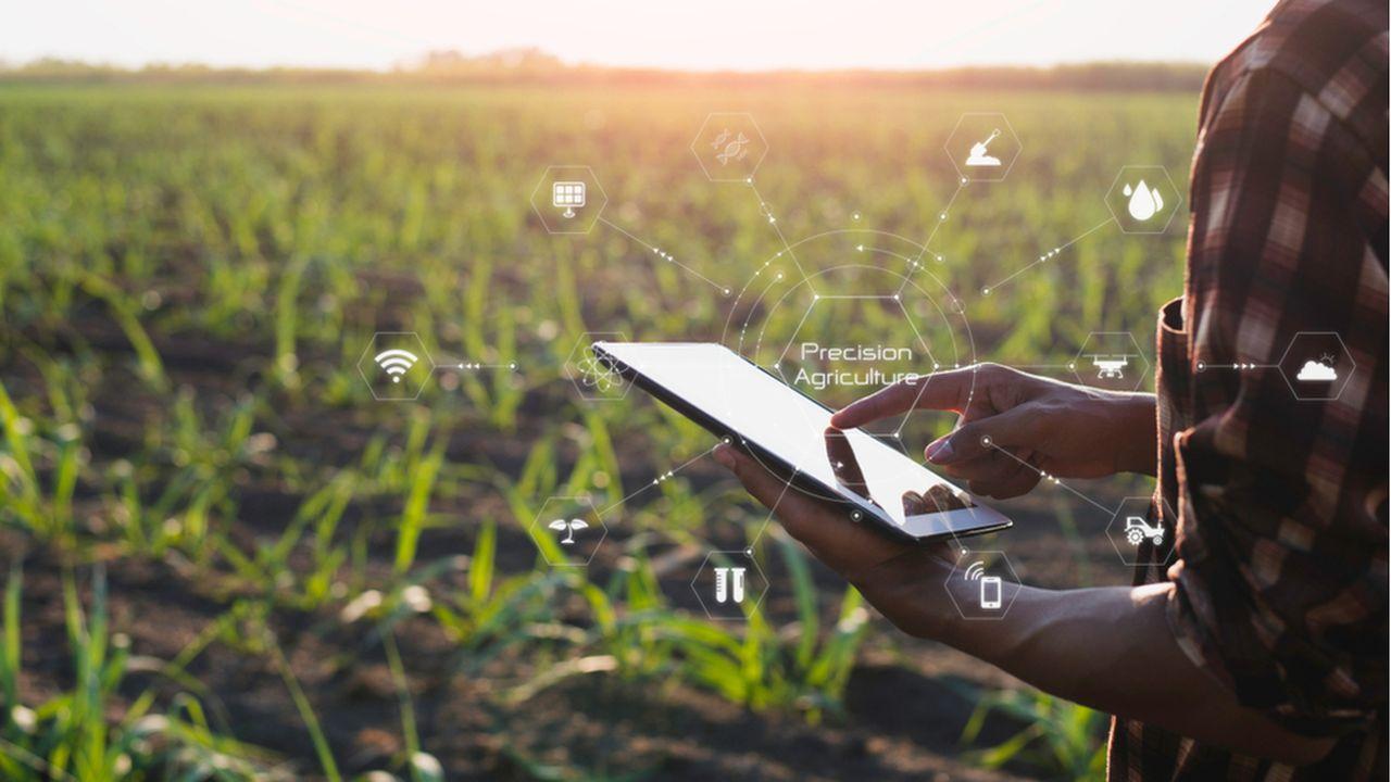 ENEDIS_ECHOS_Energies renouvelables, l'agriculture peut mieux faire.jpg