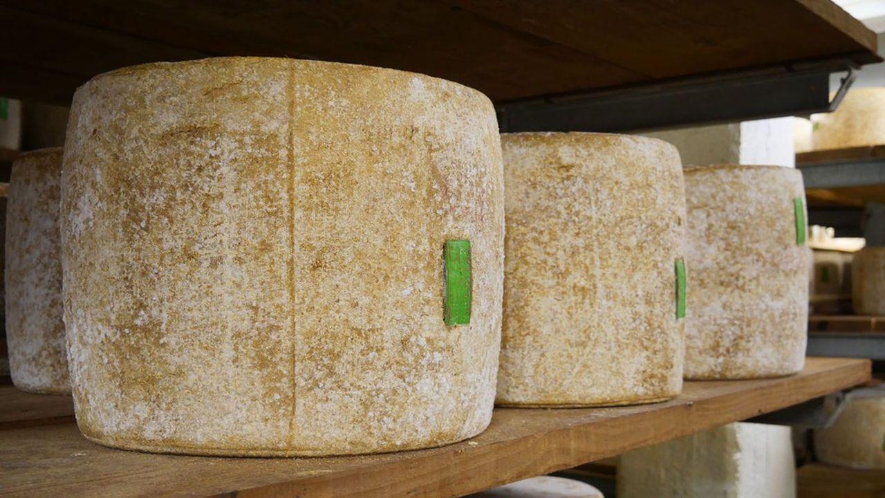 La fromagerie Paul Dischamp transforme le lait collecté auprès de 270 producteurs.