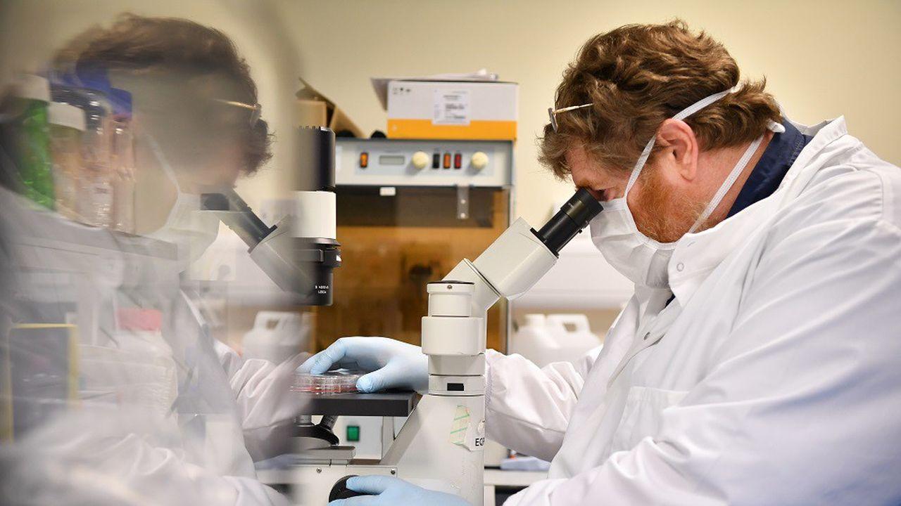 Selon l'étude, les personnes infectées perdent en moyenne26,5% de leurs anticorps.