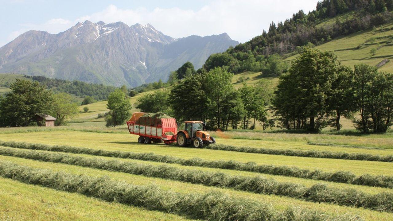 La société coopérative d'intérêt collectif (SCIC) Mangez Bio Isère joue les intermédiaires entre les agriculteurs et les acteurs de la restauration collective.