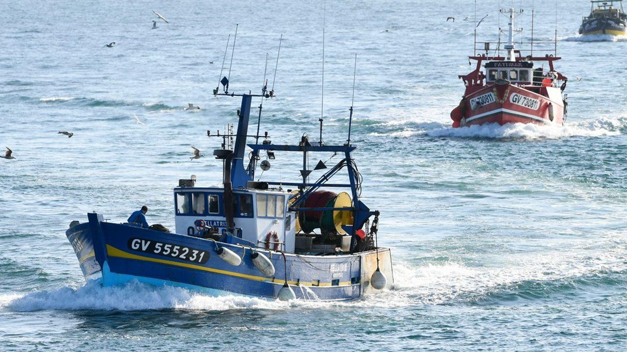 La flotte française de pêche est constituée en majorité de bateaux de moins de 12mètres de long, dont les captures s'effectuent principalement dans les eaux territoriales.