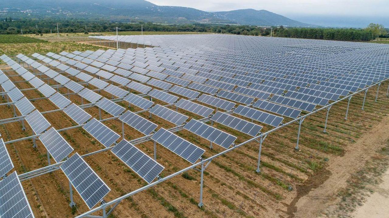 Cultivons Demain veut accélérer l'équipement en protections solaires des cultures de plein champ.