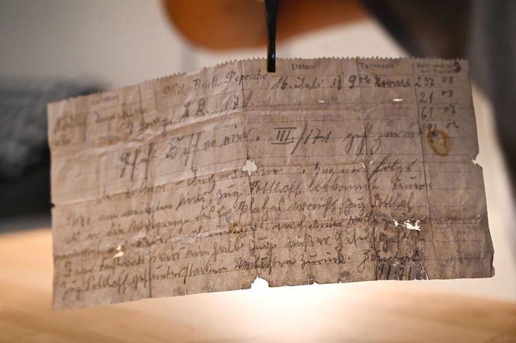 Un message transporté par un pigeon voyageur en 1910... retrouvé en 2020.