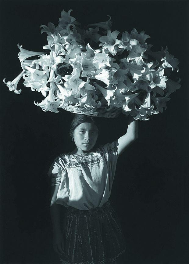 Flor Garduño, Canasta de luz (Corbeille de lumière, 1989).