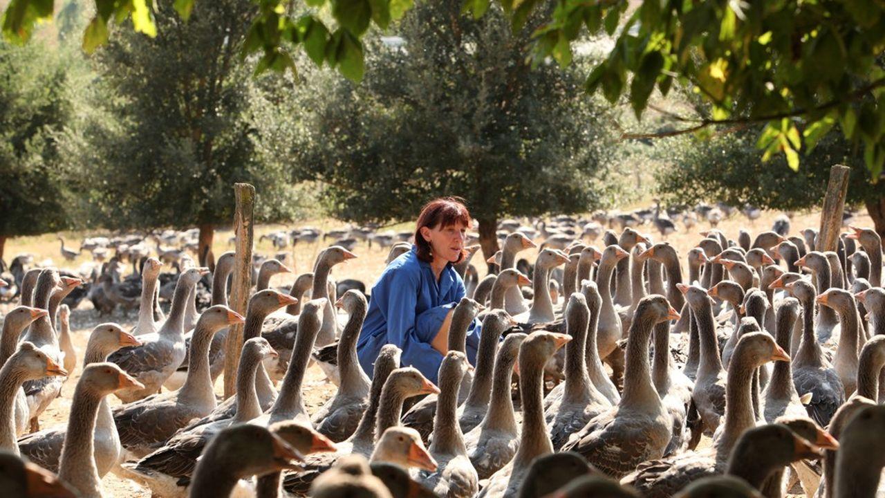 Chantal Brèthes, éleveuse d'oies et de canards en Chalosse, dans les Landes.