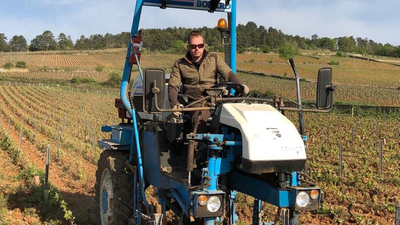 Tractoriste, un métier en tension dans les vignes de Bourgogne.