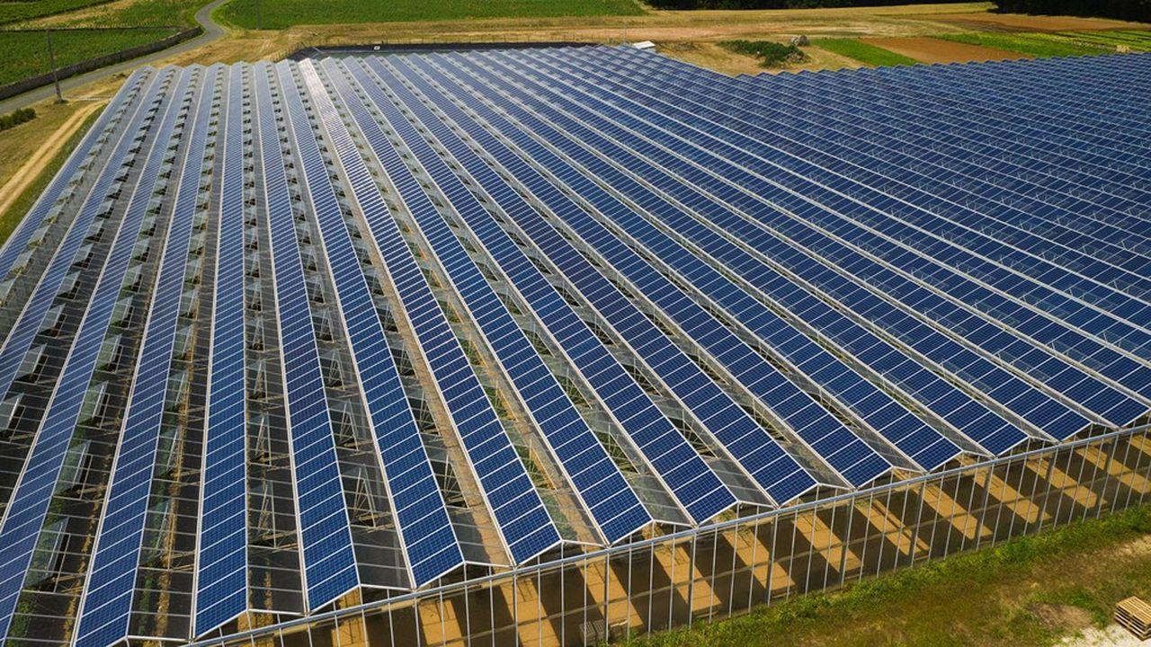 Reden Solar est un spécialiste de l'électricité photovoltaïque fondé en 2008, qui compte une centaine de salariés dans 7 pays.