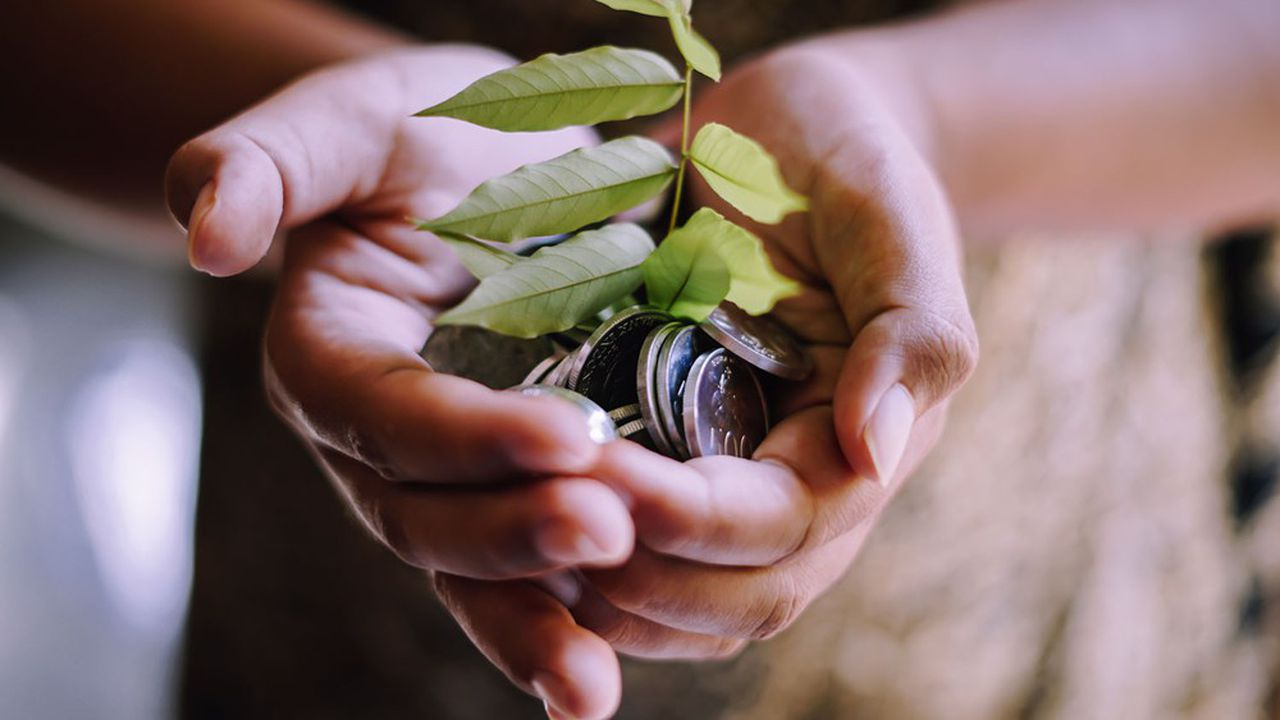 Les fonds monétaires représentent près d'un tiers des encours labellisés ISR