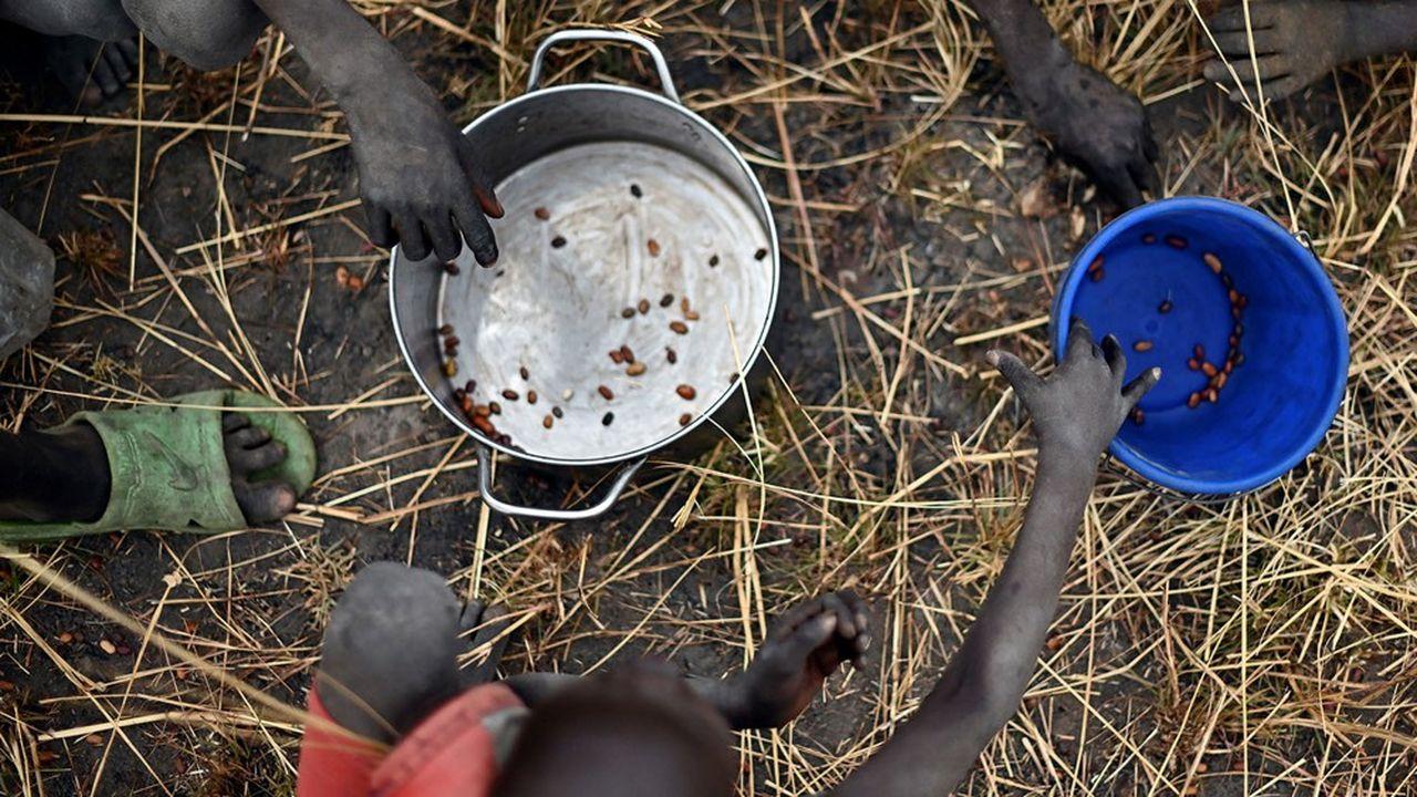 Près d'un humain sur neuf souffrait déjà de sous-alimentation chronique en 2019 selon les Nations unies.