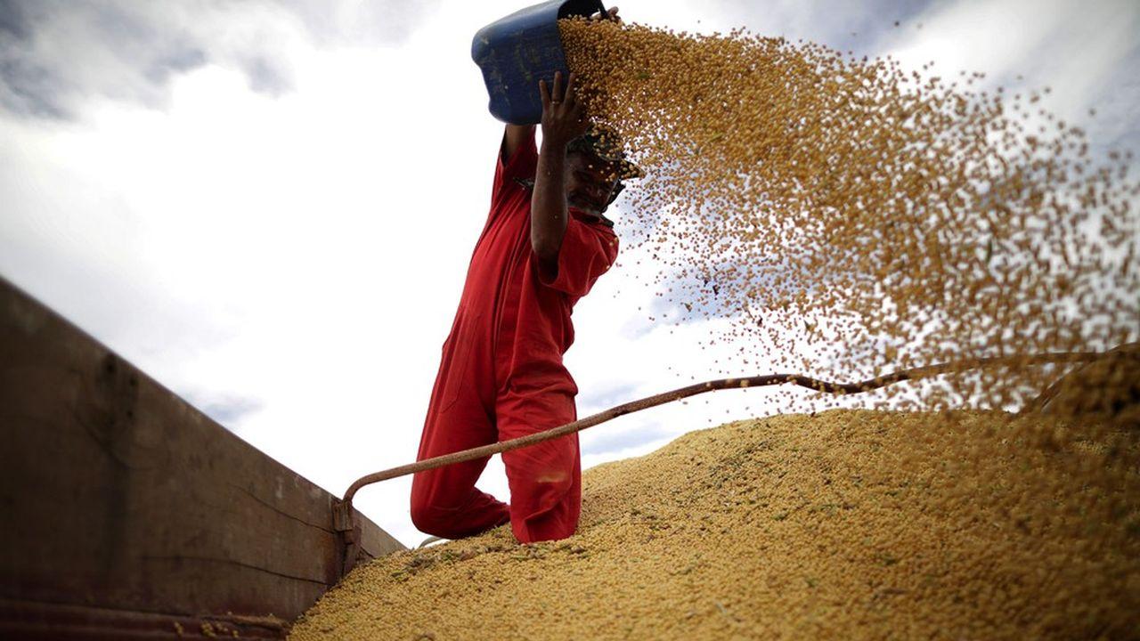 La production de soja au Brésil est menacée par un temps sec.