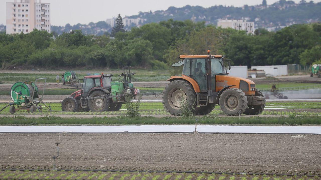 Les Yvelines, deuxième territoire agricole d'Ile-de-France n'ont pas été épargnés par les conditions climatiques