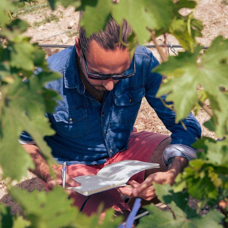 Fondateur de Wine Explorers, Jean-Baptiste Ancelot (ici en Turquie) partage les expériences acquises en visitant plus de 500 vignobles à travers le monde.Brice Garcin