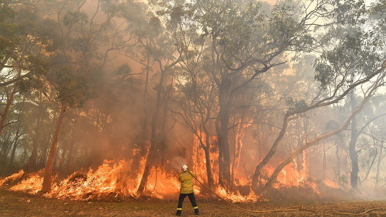 Lors du dernier été austral, les grands incendies en Australie ont relâché dans l'atmosphère plus de 400millions de tonnes de dioxyde de carbone (CO2).